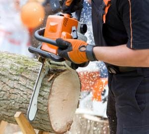 Close up of male hands cutting trunk with chainsaw